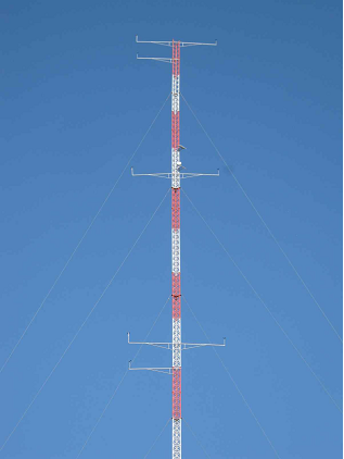 Guyed Mast with Discount